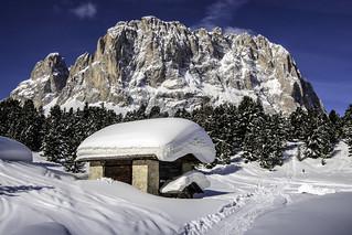 Dolomiti - Sassolungo - Val Gardena