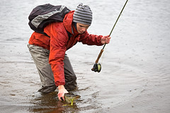Pike down! (Byskan) Tags: fishing fisherman release fisher catch flyfishing pike northern cr fiske angler esox lucius flyfisher fiskare catchandrelease catchrelease flugfiske gädda flugfiskare återutsättning