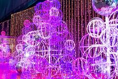 Winter Illumination (Ballet Lausanne) Tags: night tokyo shinjuku  d800