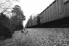 Moving Train (CamusEnDessous) Tags: bw monochrome train blackwhite moving movement traintracks overcast richmond textures movingtrain henrico