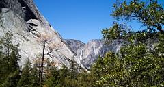 Distant Yosemite Falls. (Tall Guy) Tags: california usa waterfall falls yosemite tallguy
