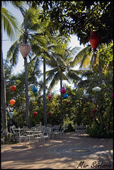 Terraza (Mar Santorio) Tags: d50 nikon terrace vietnam hoian saigon terraza farolillos