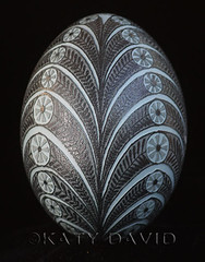 Coronet (Katy David Art) Tags: etched flower green floral leaf folkart circles acid fineart egg vine emu etch eggshell pysanka pysanky eggart