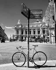 Pars Opra Garnier (lili_kanio) Tags: paris france monochrome europe iledefrance bnw