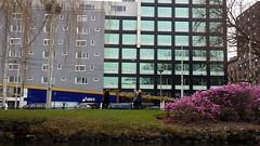 20150315_160622 (stebock) Tags: amsterdam niederlande nld provincienoordholland