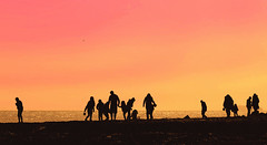 Those Few Summer Days (Mark Looker) Tags: pink sunset sky orange sun get beach silhouette yellow photography photographer photos mark horizon books lucky writer author daft dunk looker fcition