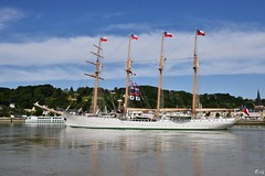 BE Esmeralda (pontfire) Tags: france seine sailboat river boats boat dock sailing ship ships vessel rouen sail tallship voile quai voilier vessels fleuve navire laseine seinemaritime hautenormandie armadadechile portderouen navires buqueescuelaesmeralda oldsailingship grandvoilier vieuxvoilier vieuxbateau be43 beesmeralda pontfire villederouen elbuqueescuela quatremtsgolettebrigantine brikentine