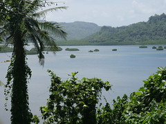 Southeast coust, Pohnpei.