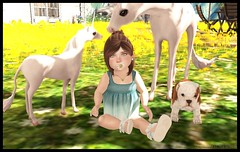 Resting with Rocco ft. Paper Damsels (delisadventures) Tags: summer dog beach home beautiful sunshine playground garden fun bucket spring sand toddler pretty landscaping adorable ground bulldog ombre sl glorious secondlife tiny sit second summertime pup gems beachy trinkets td funinthesun toddle slblog slfashion slbabe secondlifefashion slkids slevents secondlifeblog slaccessories slfamily seconlifefashion slfashionblogger slfashions slbaby slfashionblog tinytrinkets slblogger secondlifefashionblog toddleedoo toddleedoos slfashin slbog slfashino slblogg toddleddoo