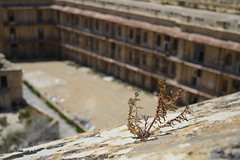 Saint Elmo's Fort, Valletta, Malta (fame&obscurity) Tags: sun plant dusty abandoned stone yard baking weed fort decay malta eerie prison baren faded jail dust desolate cells decayed ruined valletta apocolyptic postapocolyptic saintelmosfort