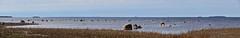 DSC_1691_B (arto hkkil) Tags: sea finland oulu meri nallikari