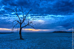 _IGP2591_2_3_4_5 (blackcloudbrew) Tags: sunset riverside redhill hdr saltonsea samsung1224 pentaxk5