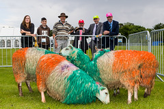 cricket_2015-58.jpg (Fingal County Council) Tags: fingal newbridgehouse flavours donabate pwp flavoursoffingal fingalcoco fingalcountycouncil