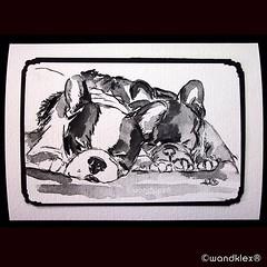 Mit jemandem dem man sich nahe... (wandklex Ingrid Heuser freischaffende Knstlerin) Tags: dog art watercolor kunst hund franz frenchbulldog watercolour bulldogs comission aquarell malerei bulldogge custompaint hunderunde handgemalt frenchbully wandklex dogsofinstagram uploaded:by=flickstagram dogsofig bulldoglife frenchbulldogsofinstagram bulliesofinstagram dailyinsta hahnem gutenachtklex instagram:venuename=wandklexkunstatelier instagram:venue=295832873868978 instagram:photo=12582250951966094261487357881