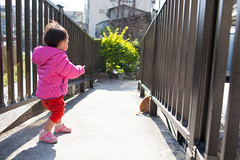 IMG_8782.jpg (()) Tags: family baby ning childern  ef35f14l canon5dmarkii