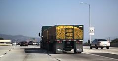 RAW_IMG_3433 (jeremy!) Tags: losangeles freeway i210 canon1740mm canoneosrebelt1i