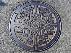 Aki Oita, manhole cover  (MRSY) Tags: flower   manhole