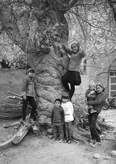 Kids (Keith211) Tags: china leica travel trees bw woman tree kids photography mono blackwhite kid village apricot xinjiang persons bwphotography bwphoto pepole blackwhitephoto outdoorphotograph leicam outdoorphotographer thepamirsmountain