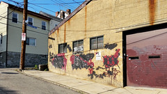 In the depths of the urban jungle (real00) Tags: city urban landscape graffiti rust pittsburgh pennsylvania streetscene neighborhood warehouse urbanlandscape rustbelt westernpennsylvania 2000s 2016 alleghenycounty 2010s pittsburghregion willreal williamreal bloomfieldpittsburghpa