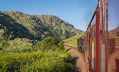 IMG_0606-1 (Nimbus20) Tags: travel holiday sunshine train scotland highlands edinburgh diesel first steam oban fortwilliam caledonian