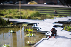 The Photographer (Brian Legate) Tags: lily sitting photographer plants lensbaby water person city park humna camera
