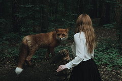 Fox (Alina Autumn) Tags: new people color art history love nature girl beautiful animal photo hands mood photographer hand russia outdoor atmosphere beaty redhead fox tenderness tragedic fragility