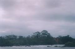 Down by riverside. (larissanunesdealbuquerque) Tags: wild film nature rain rio brasil riodejaneiro analog forest river lomography woods rainforest rainyday riverside kodak zenit analogue analogphotography forester kodakfilm tropicalforest filmphotography zenit12xp analogphotograph filmphotograph