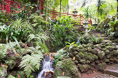 Oriental garden, Monte Palace Tropical Park (Brian Ritchie) Tags: portugal gardens monte madeira funchal montepalacetropicalgardens