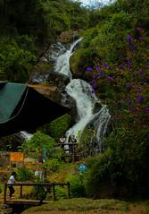 IMG_7785 (mariaalejandrazuluagaalzate) Tags: life naturaleza nature waterfalls vida cascada