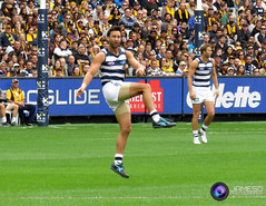 Geelong Football Club Photos 2016 (JamesDPhotography) Tags: cats football powershot cheer canon cameron photography patrick tom jimmy stanley shane club squad cats hawkins geelong dangerfield guthrie rhys bartel kersten jamesd sx710