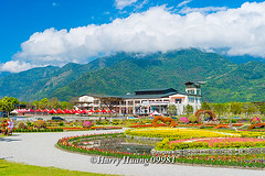 Harry_09981,,,,,,,,,,,,,,,,,, (HarryTaiwan) Tags: taiwan    d800                  harryhuang     hgf78354ms35hinetnet
