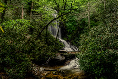 Upper Catawba Falls, North Carolina (photographybyjameshoffman) Tags: white water forest waterfall falls national cascade cataract pisgah plunge catawba northcarolinamountains