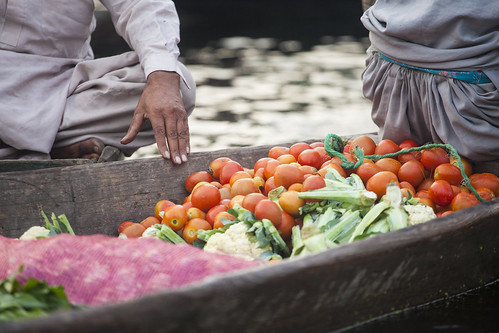 Vegetables - Floating market - Srinagar - Kashmir - Sylvain Brajeul ©