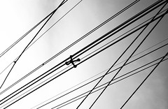When they flew away... (Angelo G.I.O.) Tags: road street morning light sky bw white abstract black streets art monochrome lines silhouette composition thailand outside outdoors 50mm grey daylight morninglight blackwhite nikon asia pov availablelight bangkok patterns curves streetphotography silhouettes cables daytime nikkor naturalight 50mm18 electriccables d3000 bangkae streetsofbangkok nikond3000 phetkasemroad phetkasem