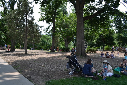 Photo - Central Park
