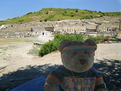 """But!!! It's a building site!"" [Explored] (pefkosmad) Tags: city vacation holiday ted history archaeology ruins notimpressed explore greece teddybear greekislands buildingsite ancientgreece dodecanese kamiros explored kameiros tedricstudmuffin tedrhodes2013"