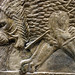 Lion Hunts of Ashurbanipal, dying male lion (head)