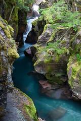 Avalanche Creek (John Sieber) Tags: photography nps glaciernationalpark gnp avalanchecreek