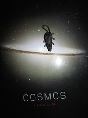 rat cosmos teacup (William Keckler) Tags: book rat glare space flash plastic teacup cosmic cosmos cosmicrat