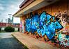 I was a ghost before you came (Sky Noir) Tags: street urban art graffiti southside rva urbex skynoir