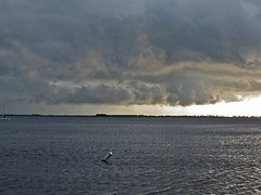 A Thunderstorm Sweeps out to the Gulf (kthypryn) Tags: storm gulfofmexico water rain weather clouds florida horizon thunderstorm westcoast saltwater crystalbeach 9413