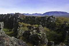 Á Þingvöllum (geh2012) Tags: mountains iceland thingvellir þingvellir ísland klettar geh fjöll gunnareiríkur