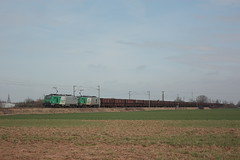 BB 37014 + BB 27053 / Merris (jObiwannn) Tags: train locomotive prima fret ferroviaire