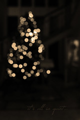 it's all so quiet... (ggcphoto) Tags: vertical sepia night nopeople christmastree fairylights lcfe