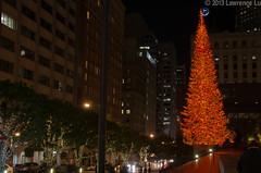 DSC_7216.jpg (Seg Fault) Tags: sanfrancisco christmaslights financialdistrict unionsquare fidi xmaschristmas