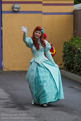 DLP Dec 2013 - The Stars of Disney's Stars 'n' Cars (PeterPanFan) Tags: travel winter vacation france ariel canon europe december character disney dec disneylandparis dlp disneylandresortparis waltdisneystudios disneycharacters disneycharacter marnelavalle 2013 waltdisneystudiospark productioncourtyard disneyparks meetgreets canoneos5dmarkiii princesprincesses starsncarsmeet