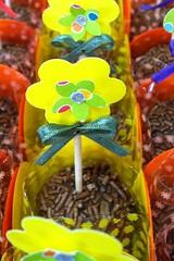 Festa jardim - Carla Medianeira Silva Nogueira (carlamedianeira@gmail.com) Tags: picnic jardim bichinhos bichinhosdafloresta festajardim festabichinhos carlamedianeirasilvanogueira