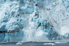_MG_4501a (markbyzewski) Tags: alaska ugly calving margerieglacier glacierbaynationalpark