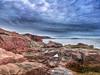 Arcadia shoreline (GillWilson) Tags: usa maine arcadia