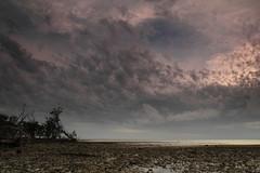 Storm - New Turkey Key (cedarkayak) Tags: storm gulfofmexico florida everglades lowtide seakayaking tenthousandislands newturkeykey